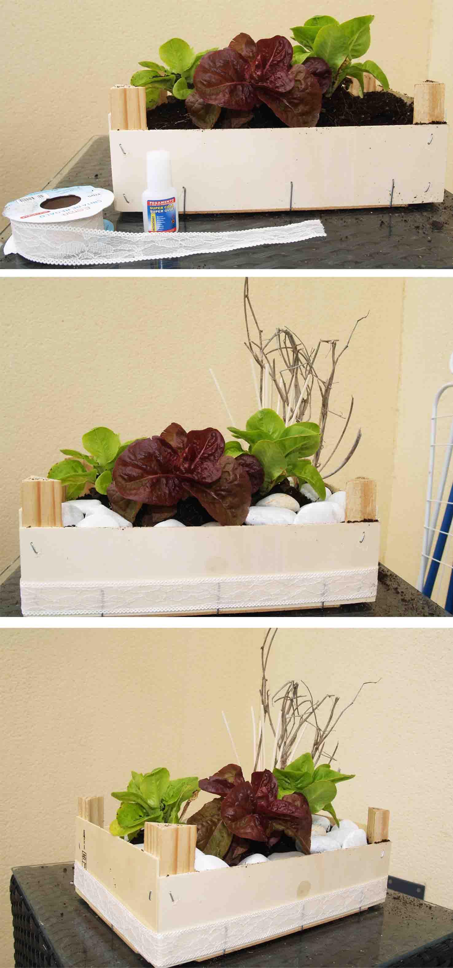 Reciclado Caja de Fresas en Huerto