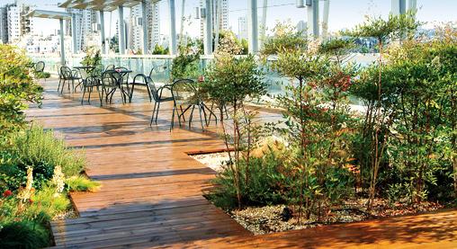 Cubierta extensiva terraza