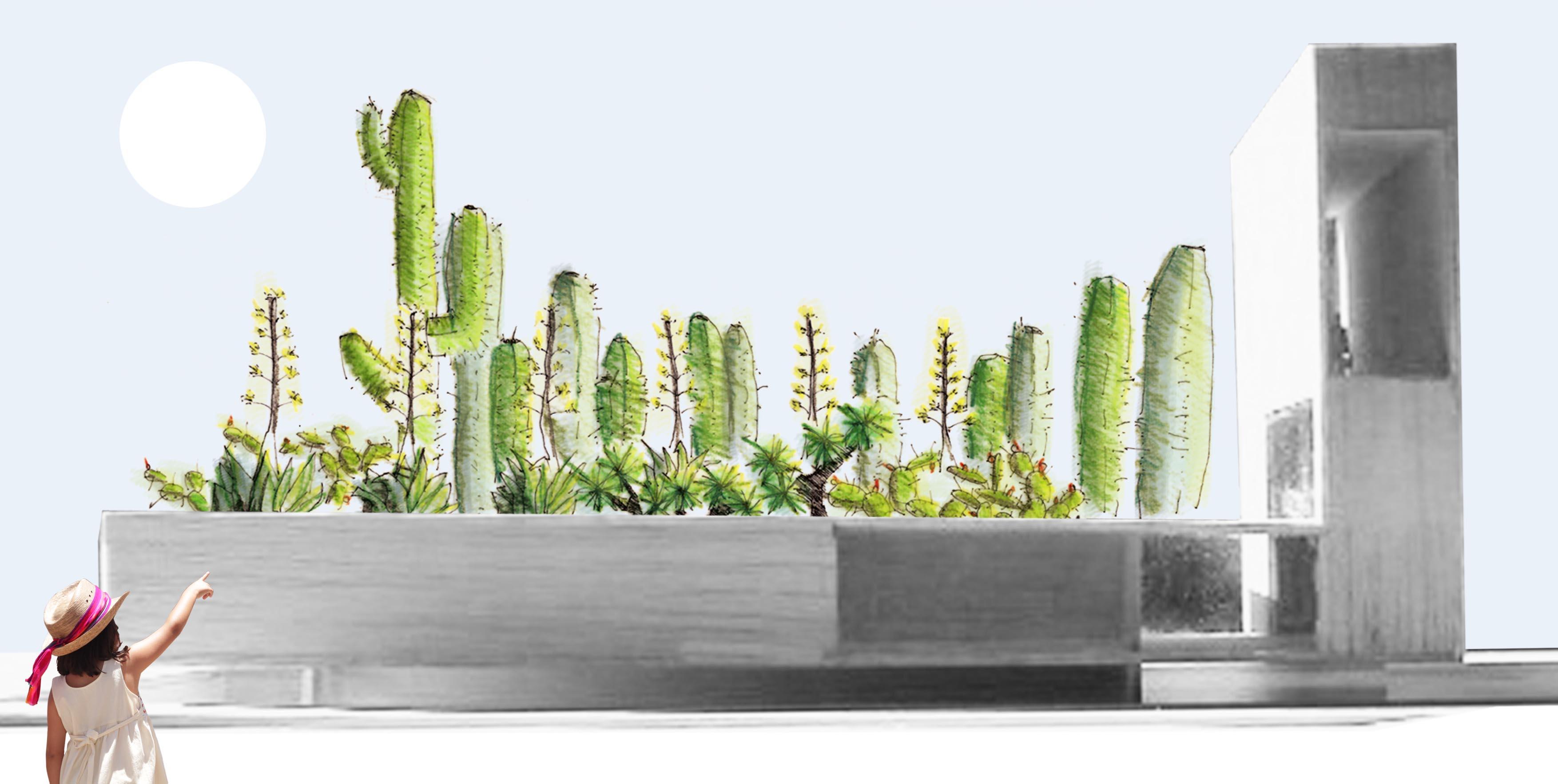 Proyecto de jardines - Jardín Xerófito