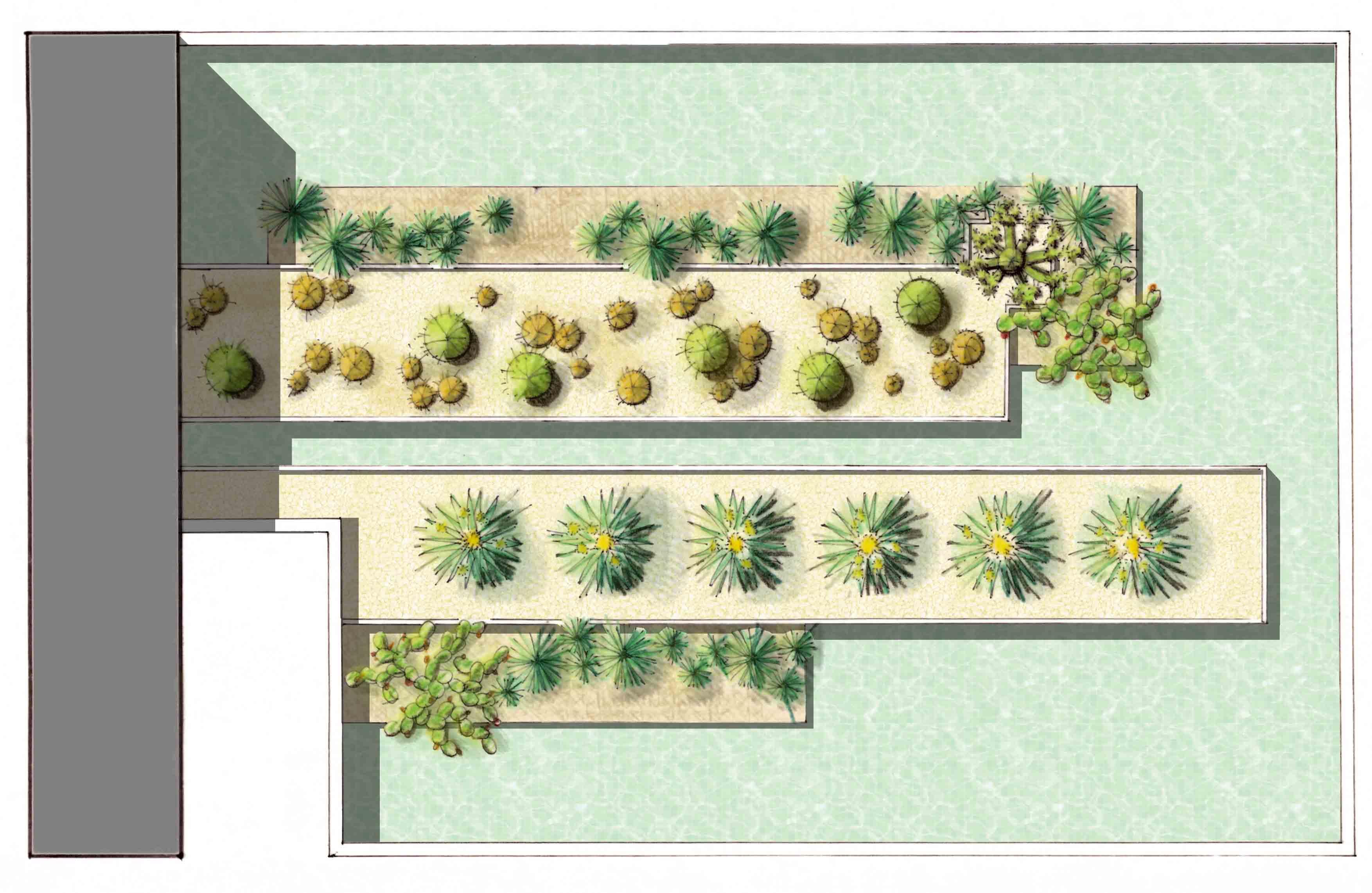 Jardín xerófito