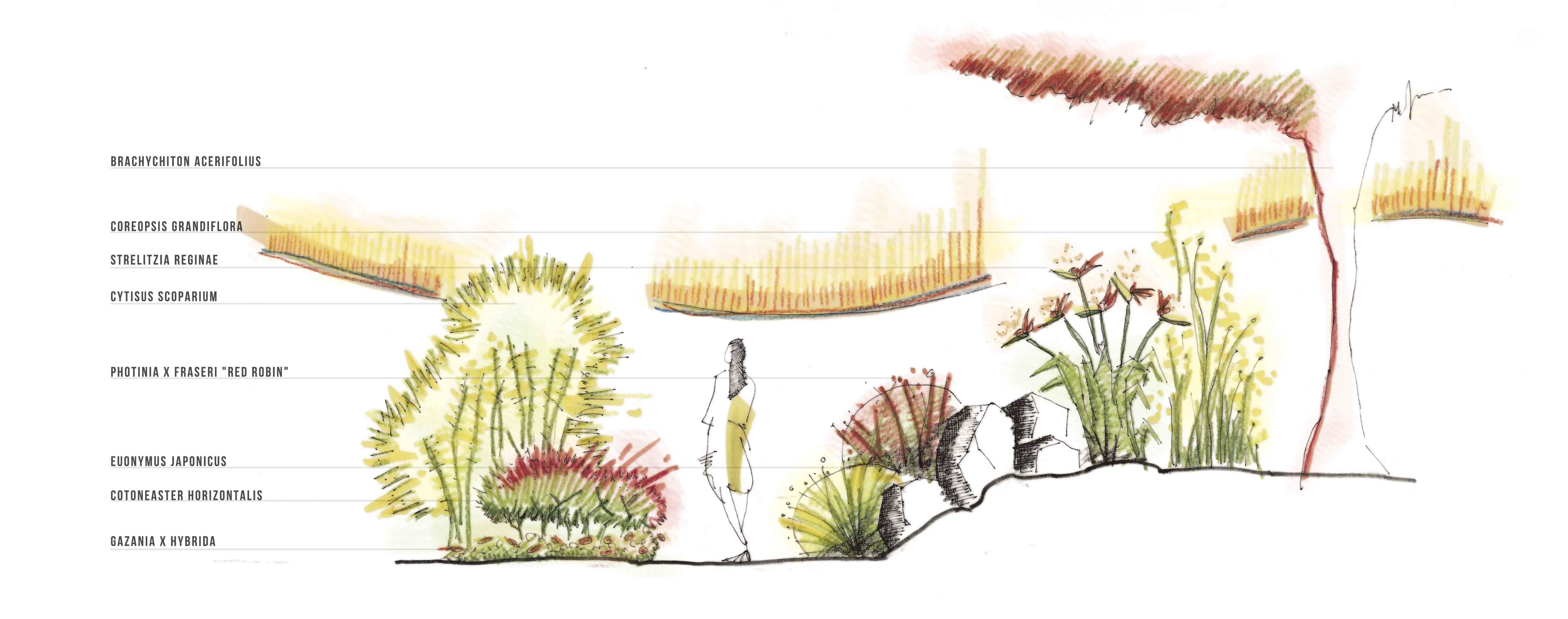 Jardín Mediterraneo de Colores Cálidos