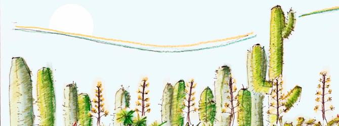 Proyecto de jardines – Jardín Xerófito