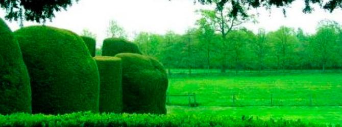 jardines de estilo
