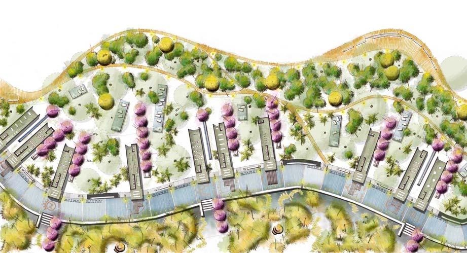 Dibujos de Jardines y Terrazas en Proceso