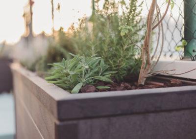 Diseño de Jardines y Terrazas Acabados