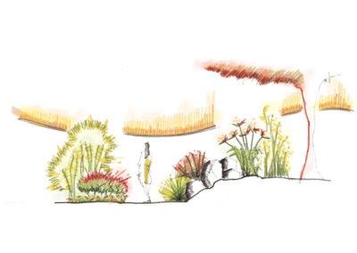 Diseño de Jardines y paisajismo Dibujo a Manos