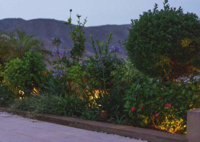 Diseño de jardines y piscinas Almería reforma integral