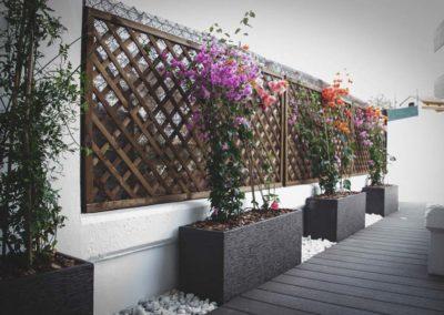 diseño de paisajismo y jardines en Almería plantas