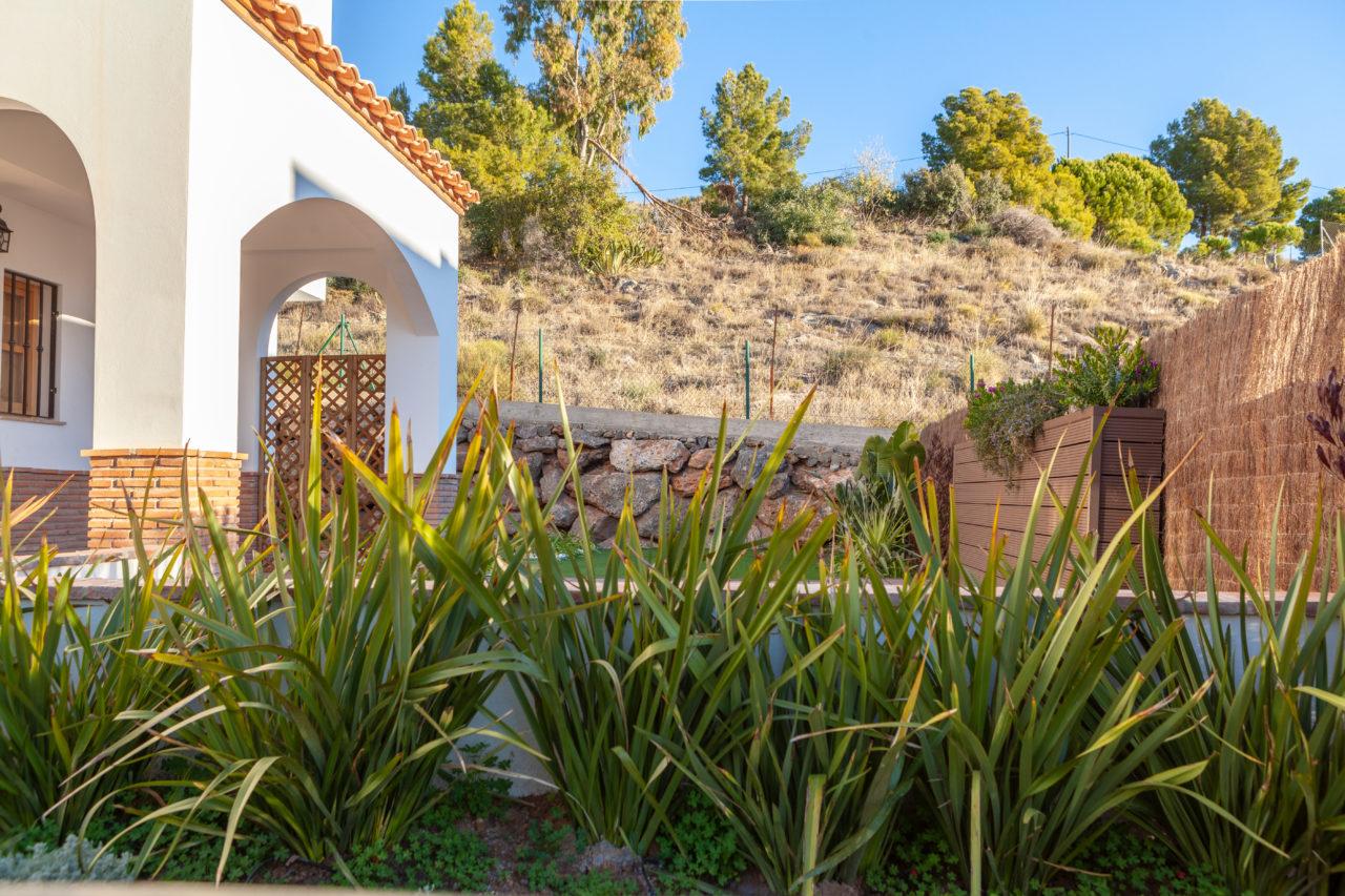 Dise o de jard n m diterraneo en enix paissano arquitecto en almer a Diseno jardin mediterraneo