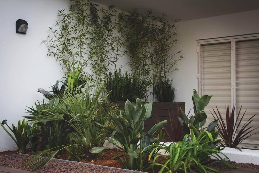 Secretos para la Jardinería y Paisajismo