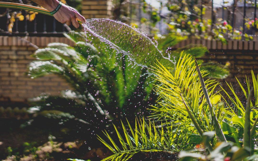 Abril 2019: Temporada de Jardines en Almería